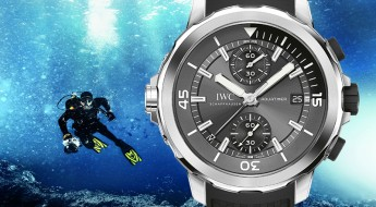 COVER-Blog-IWC-Sharks