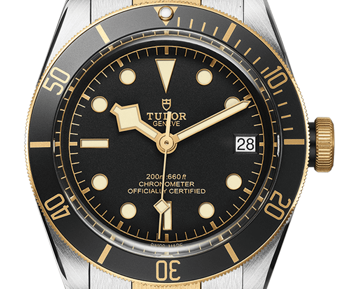 Tudor-Heritage-Black-Bay-m79733n-0002 - Copy