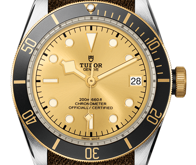 Tudor-Heritage-Black-Bay-m79733n-0006 - Copy
